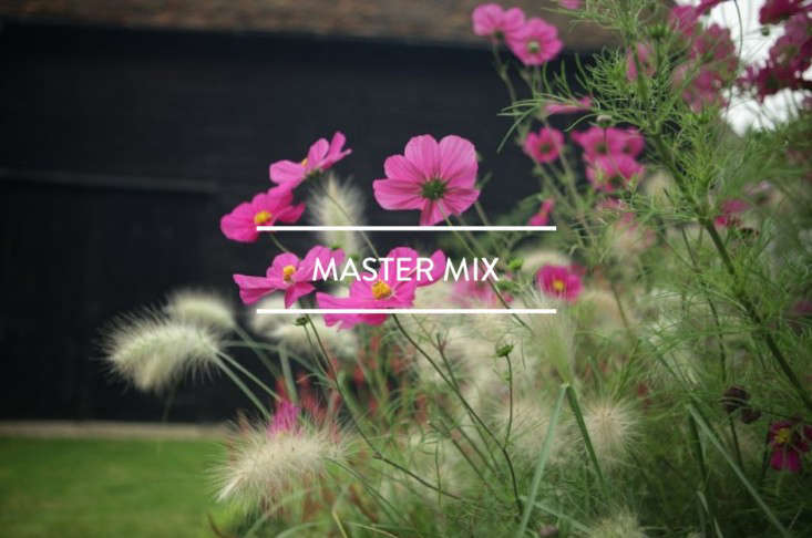 toc-master-mix-gardenista