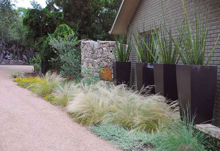 Gossamer Gardens 11 Ideas For Landscaping With Mexican
