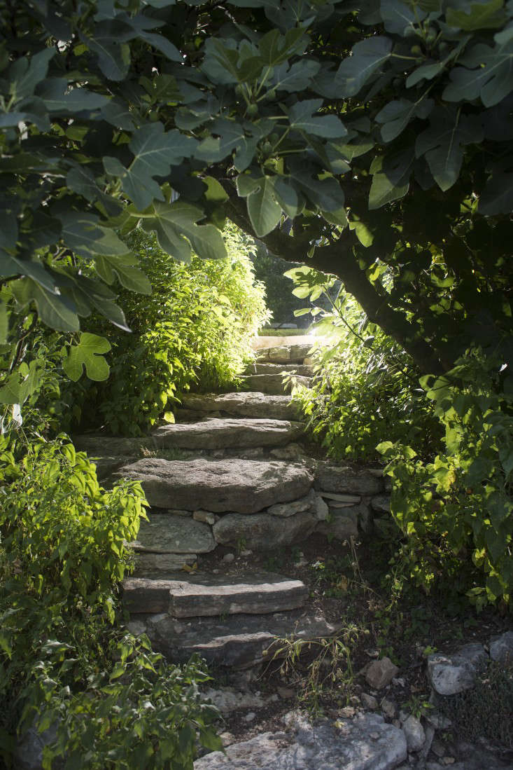 Bee-Cave-Tait-Moring-DB-path-stairs-Gardenista