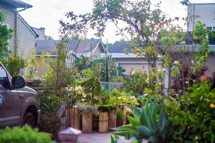 Garden Visit: My Driveway Oasis in Half Moon Bay, California ...