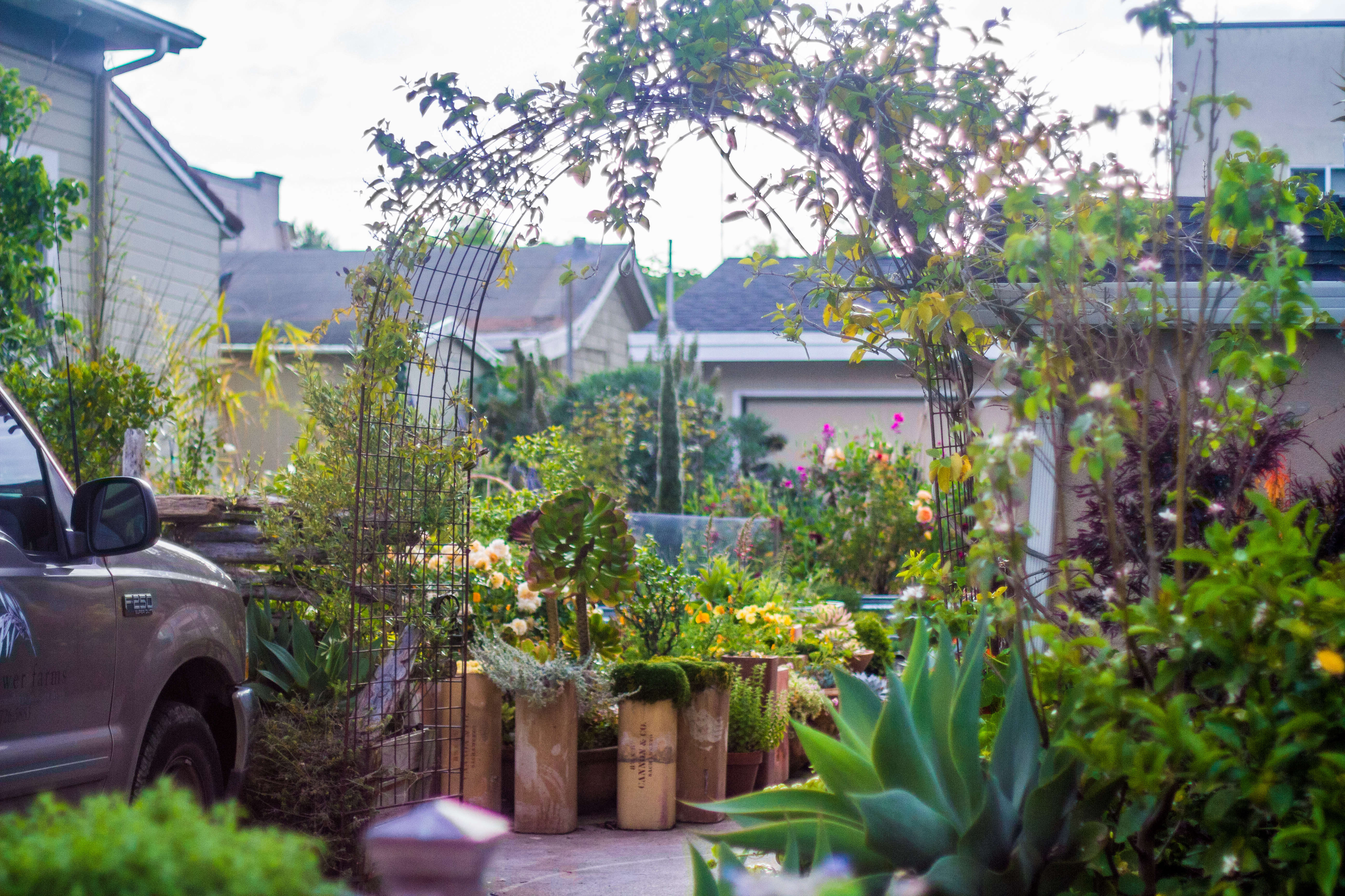 Perfect Garden Visit: My Driveway Oasis In Half Moon Bay, California