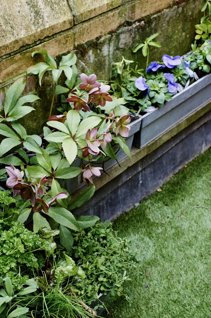 artificial-turf-isabelle-palmer-london-balcony-gardenista
