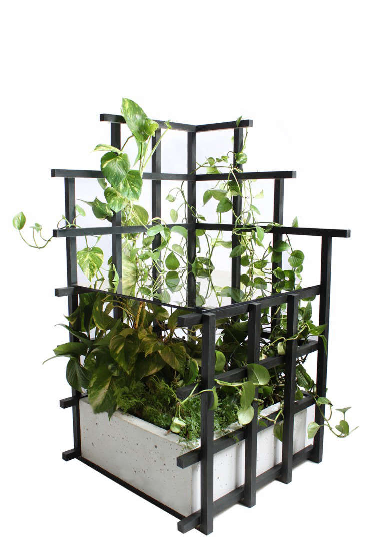 Indoor Vines Trellis Tables And Shelves From Moonish