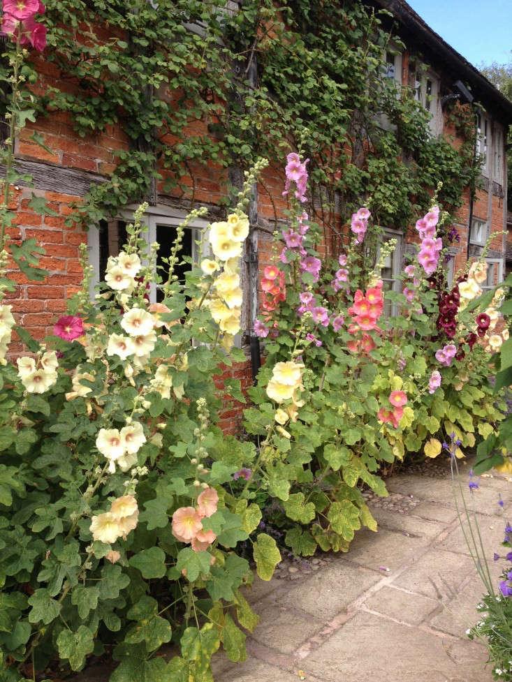 10 Garden Ideas to Steal from Wollerton Old Hall in Shropshire - Gardenista