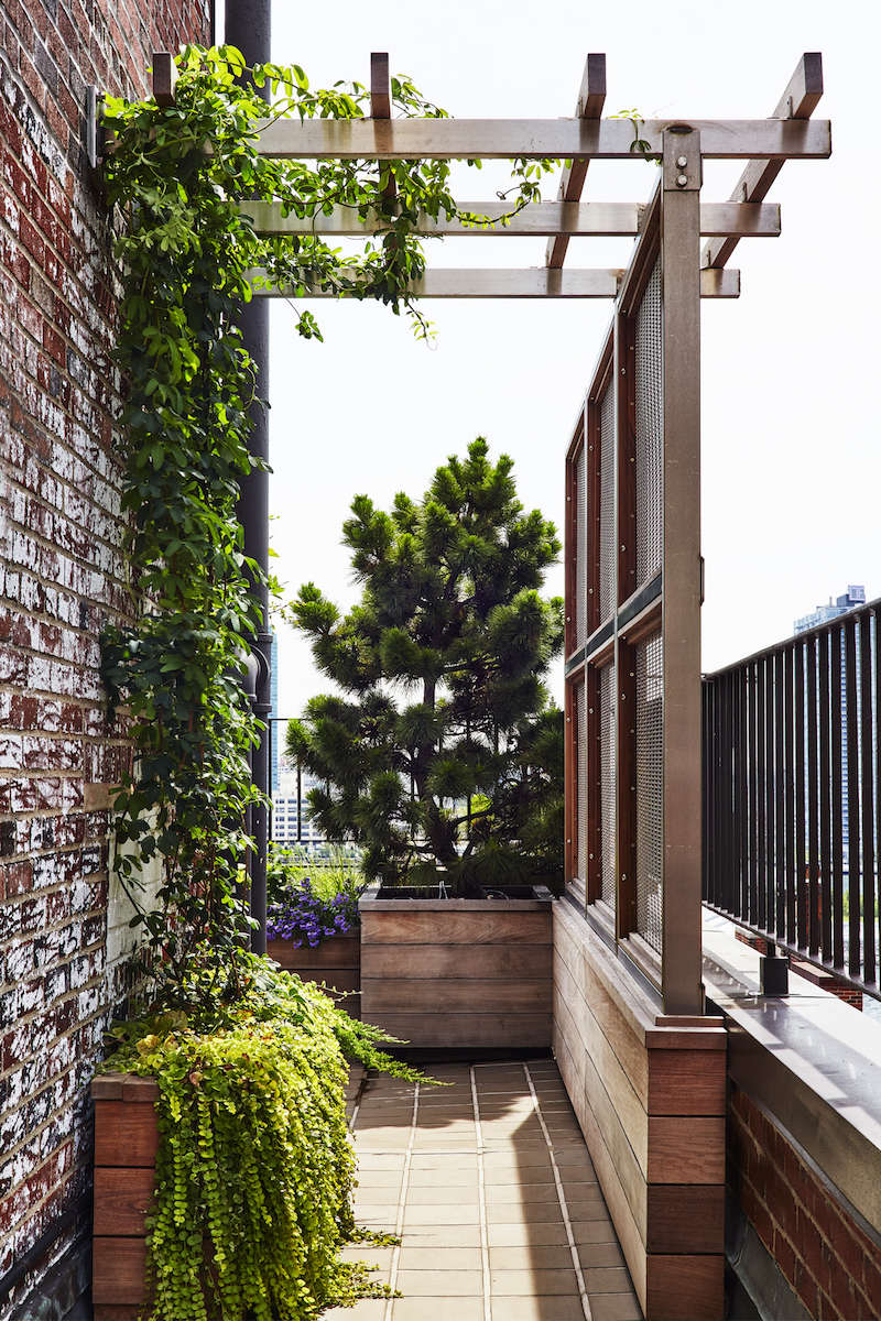 Architects secrets 10 ideas to create privacy in the for Creating privacy on patio
