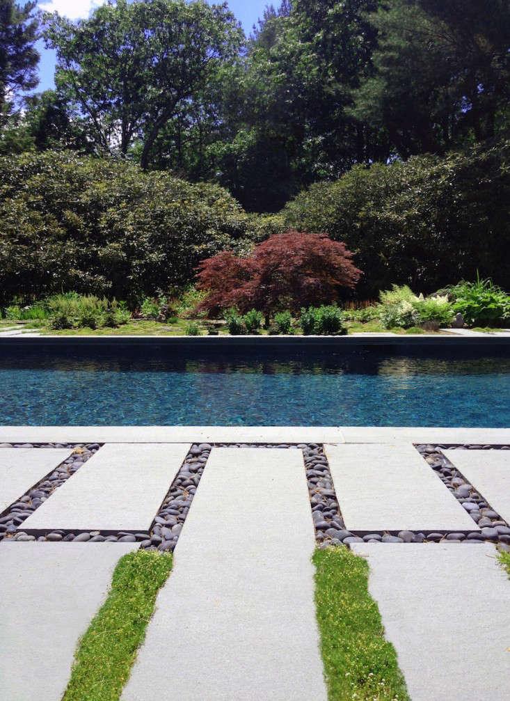 Black Mulch Landscaping Around Pool