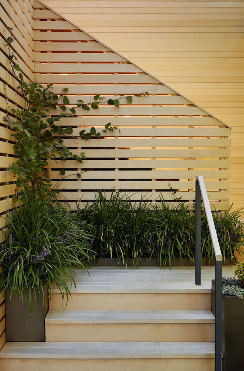 architects secrets 10 ideas to create privacy in the garden cedar lattice