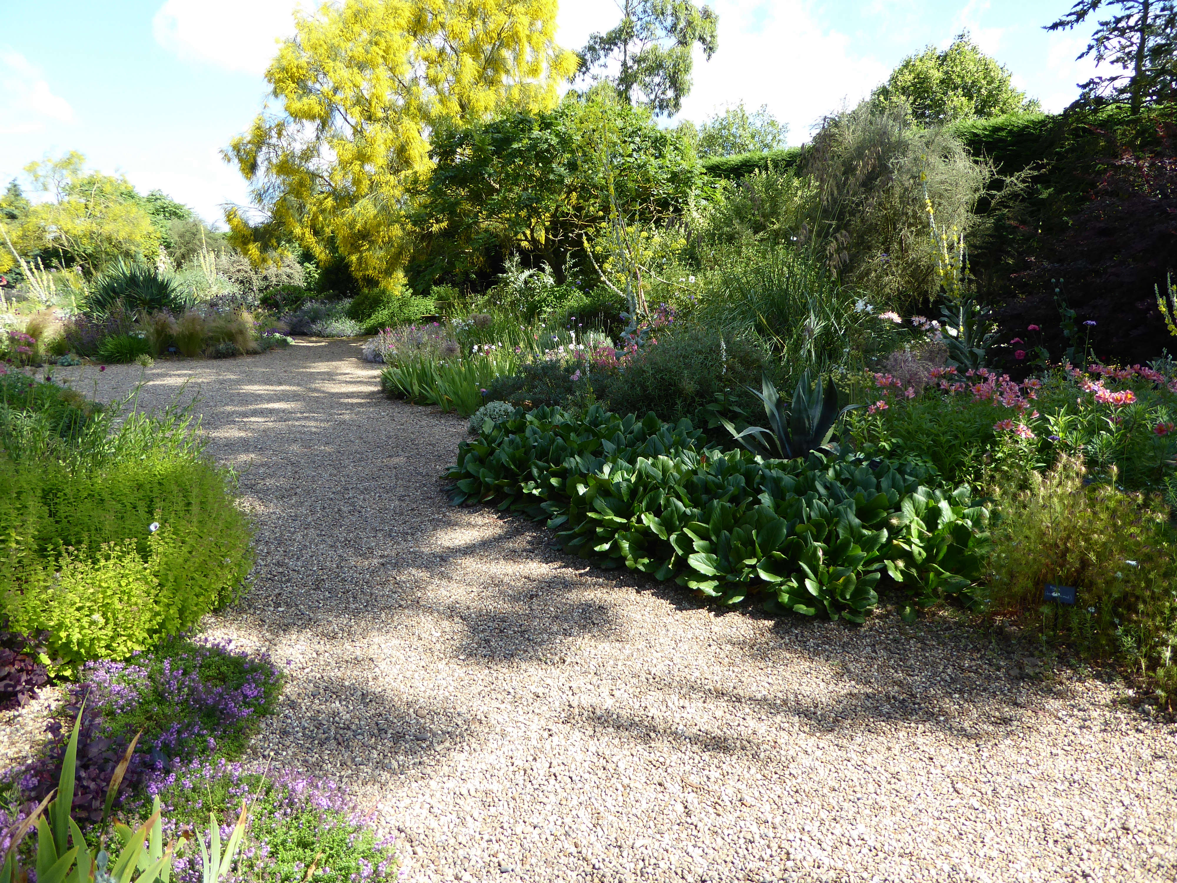 Expert advice 11 tips for gravel garden design gardenista for For garden design
