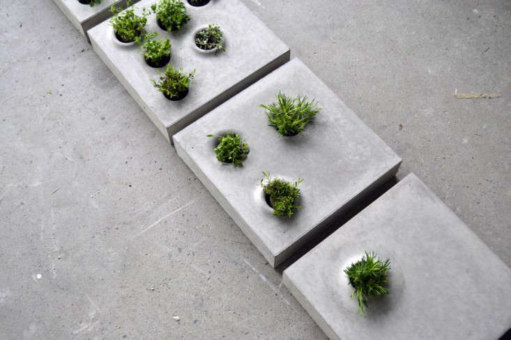 hardscaping 101: concrete pavers - gardenista