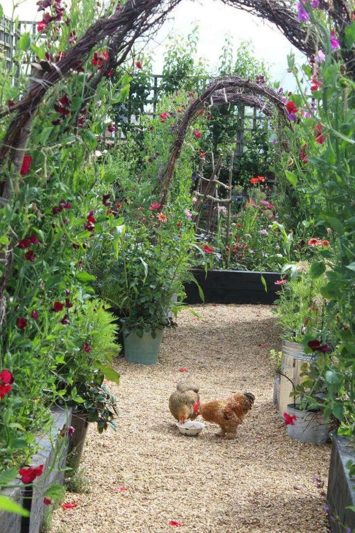 Garden Visit A Factory Yard At Emma Bridgewater In Stoke