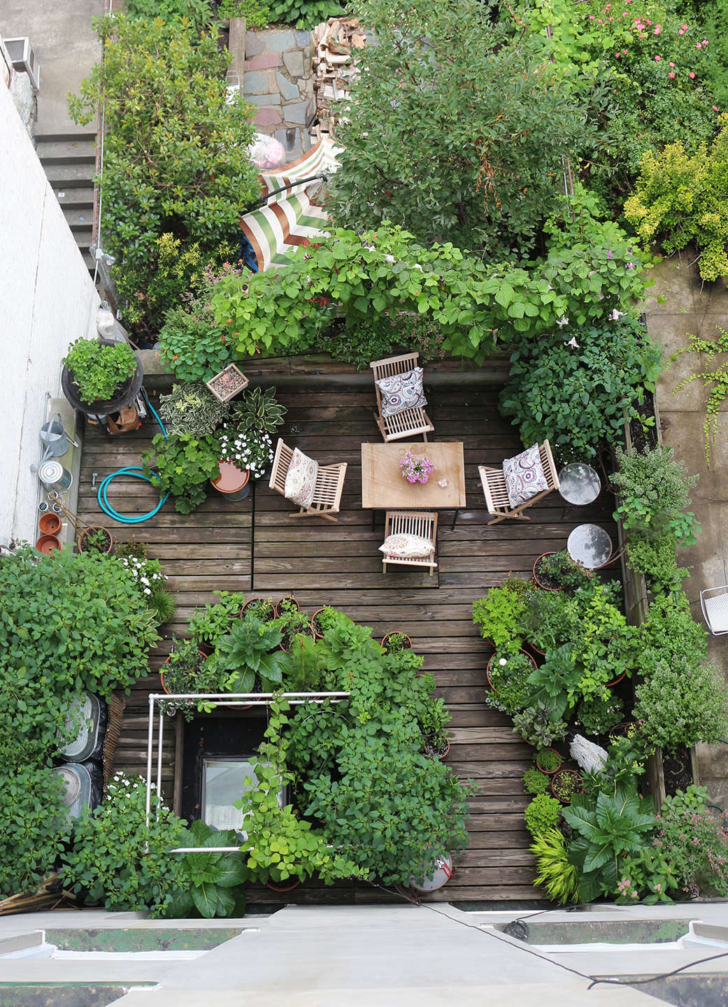 Rehab diary a year in the life of a brooklyn garden for Terrace garden design