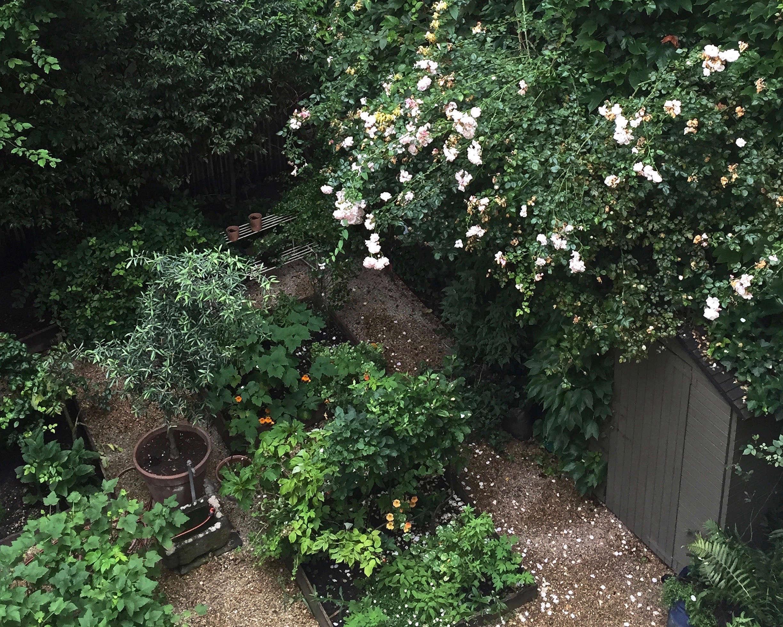 On the street 10 garden ideas to steal from paris gardenista for Channel 4 garden design ideas