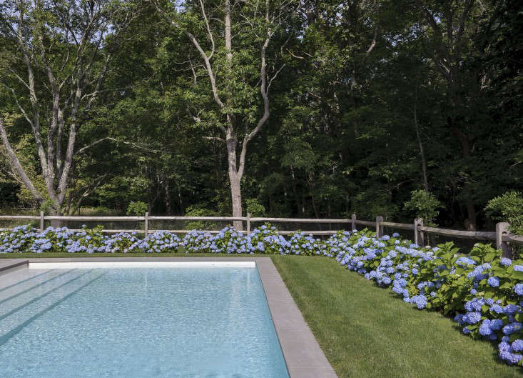 Swimming pool of the week dreaming in blue at a stylist 39 s for Gardens around pools