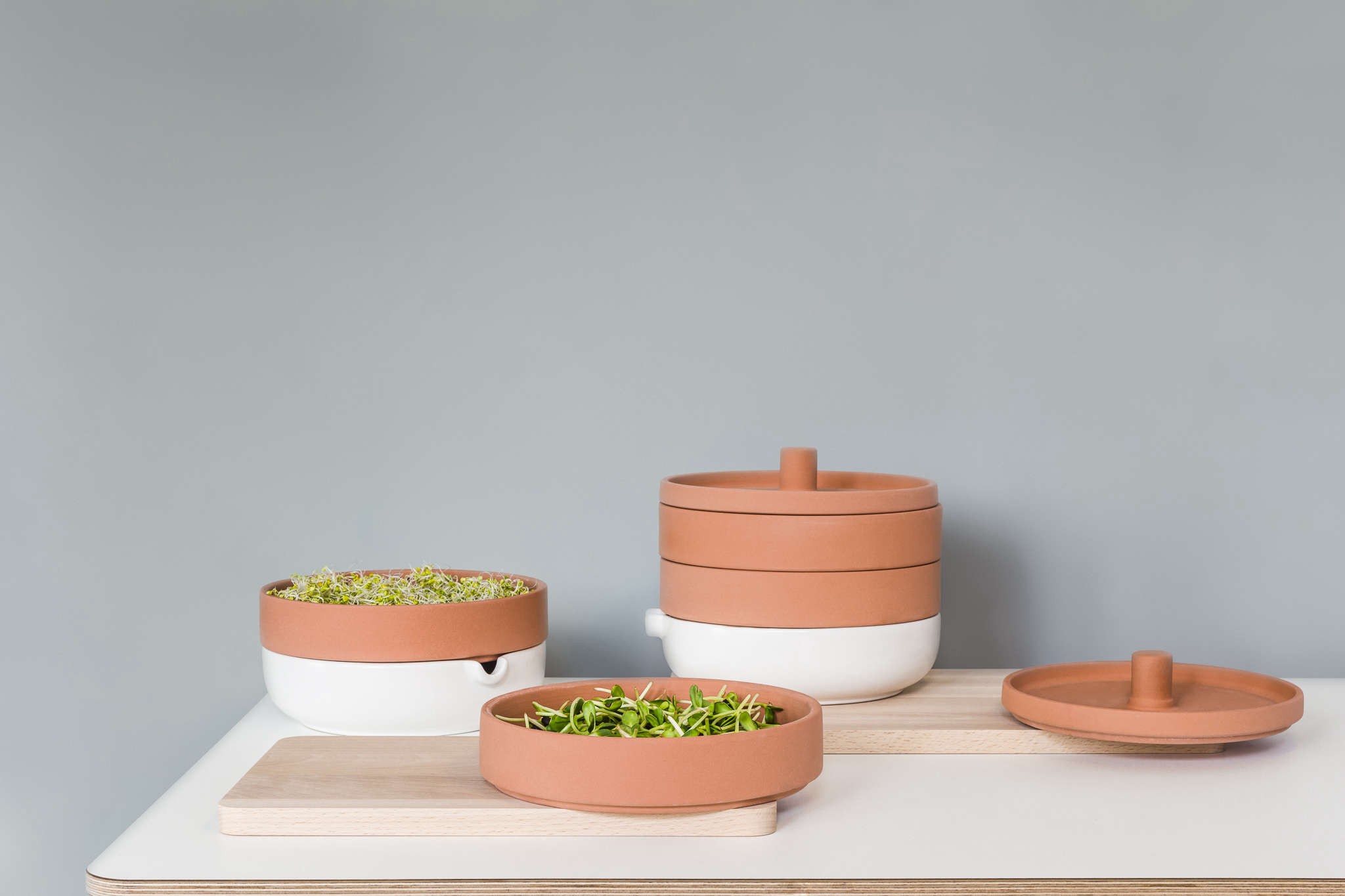 Kitchen Garden Sprouter New From Ikea A Terra Cotta Sprouter To Grow Microgreens