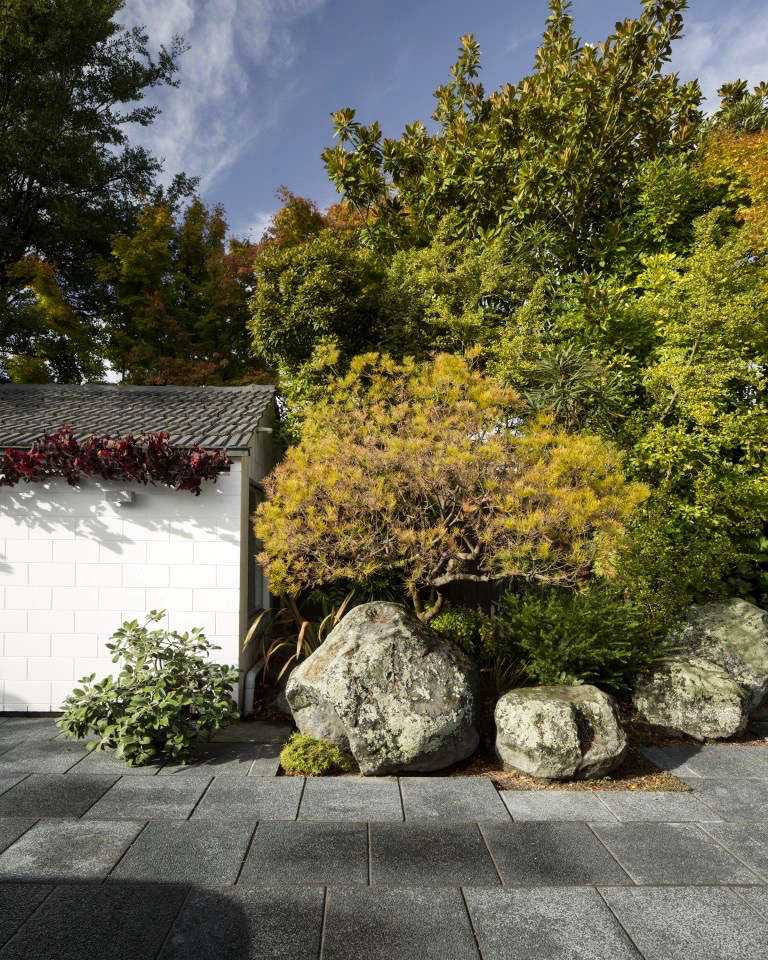 Garden visit landscaping for a modern house in for Landscape gardeners christchurch
