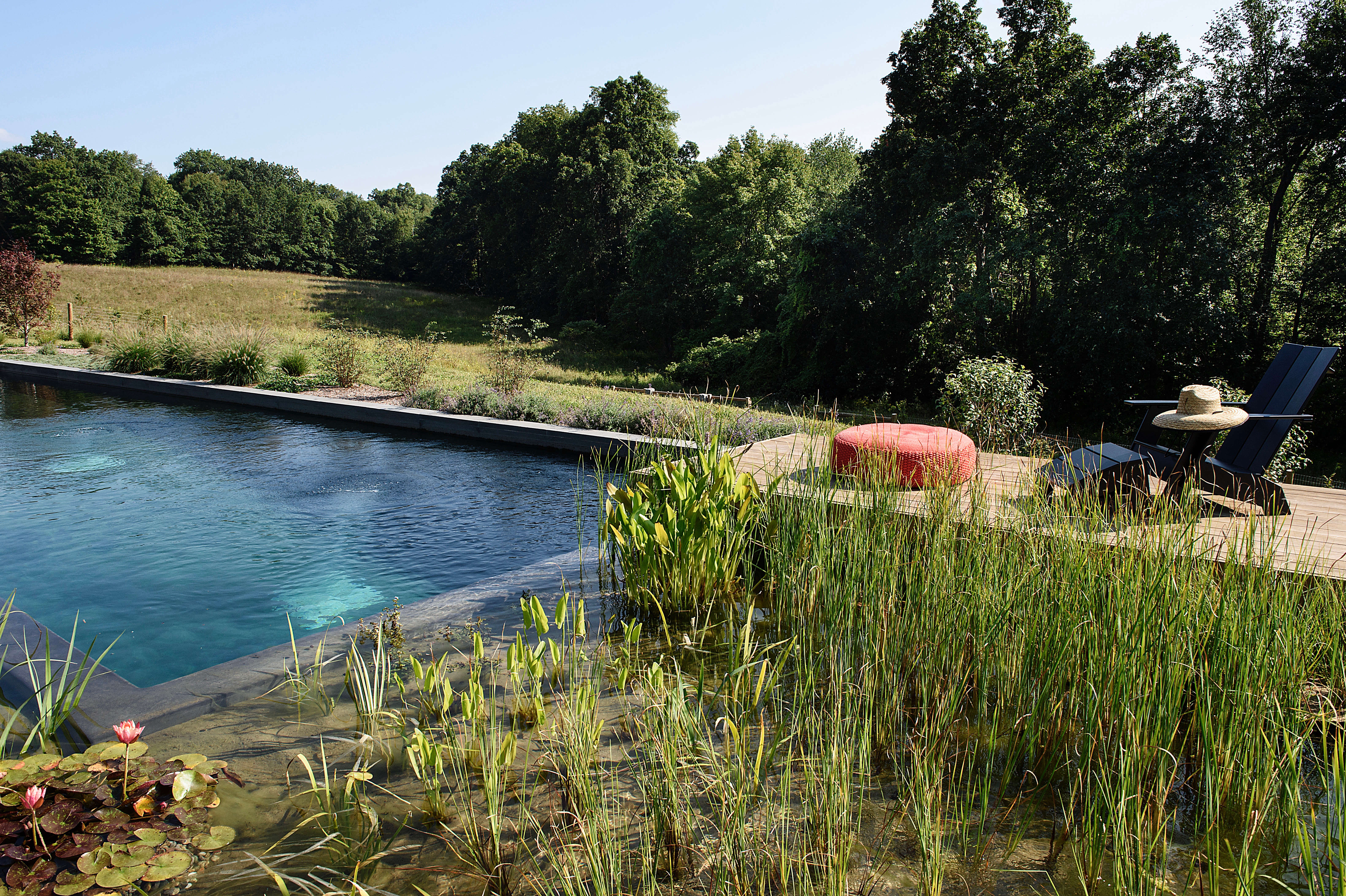 hardscaping 101 natural swimming pools gardenista sourcebook