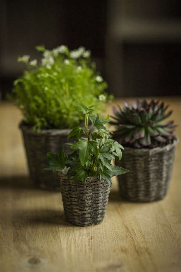 Basket Weaving Plants : Basketweave concrete plant pots gardenista sourcebook
