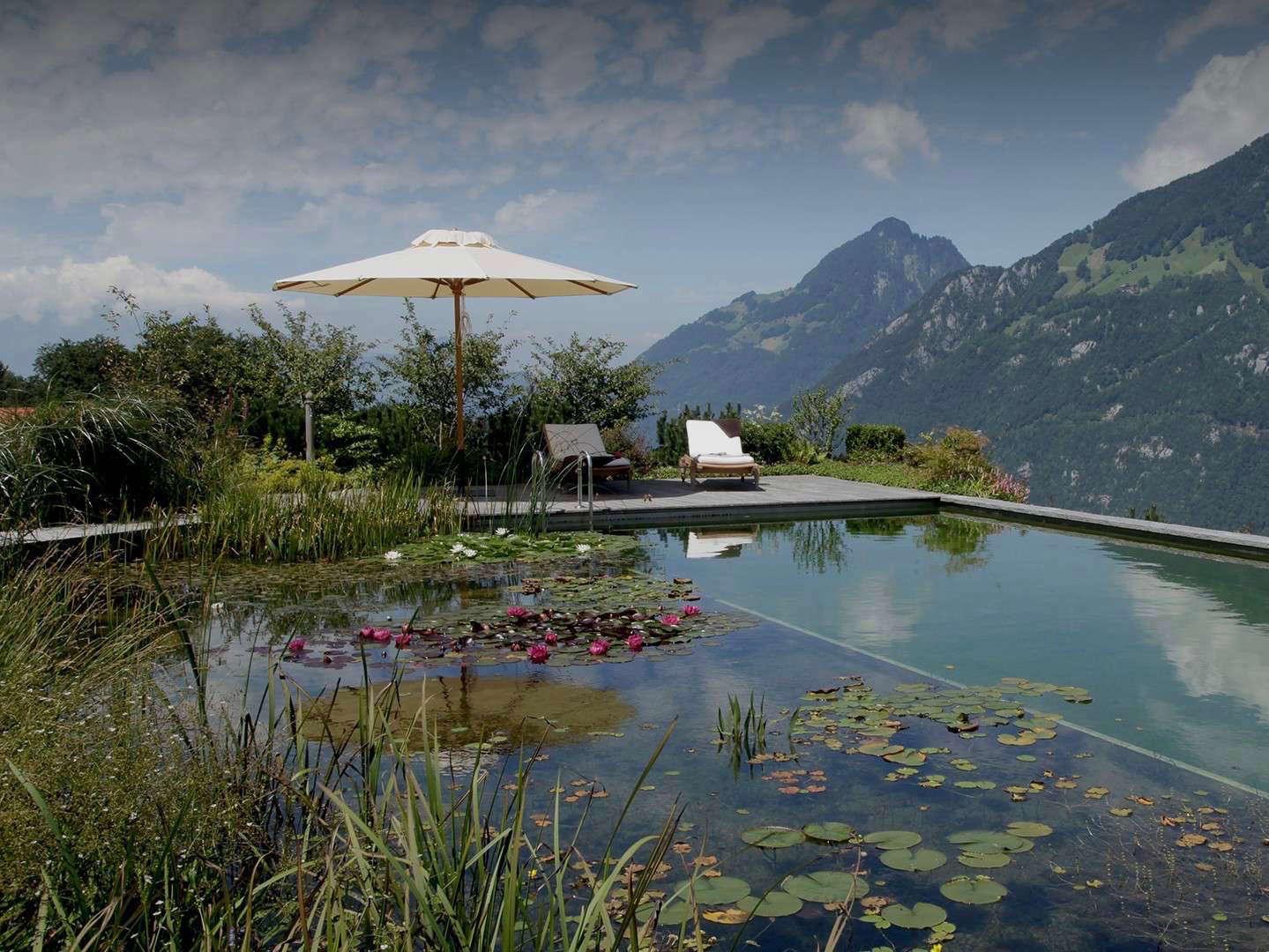 Hardscaping 101: Natural Swimming Pools