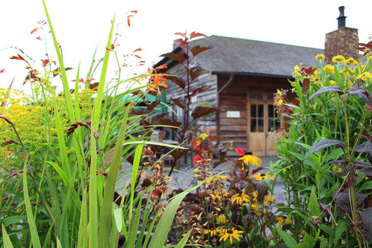 duchy-nursery-exterior-6-gardenista