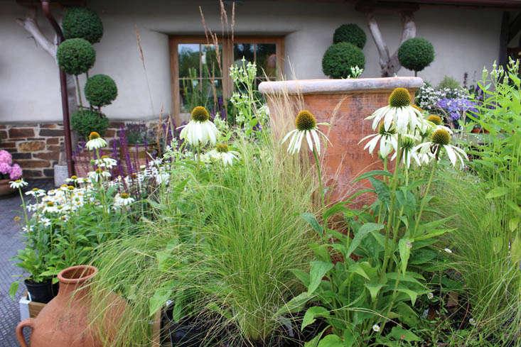 duchy-nursery-exterior-gardenista
