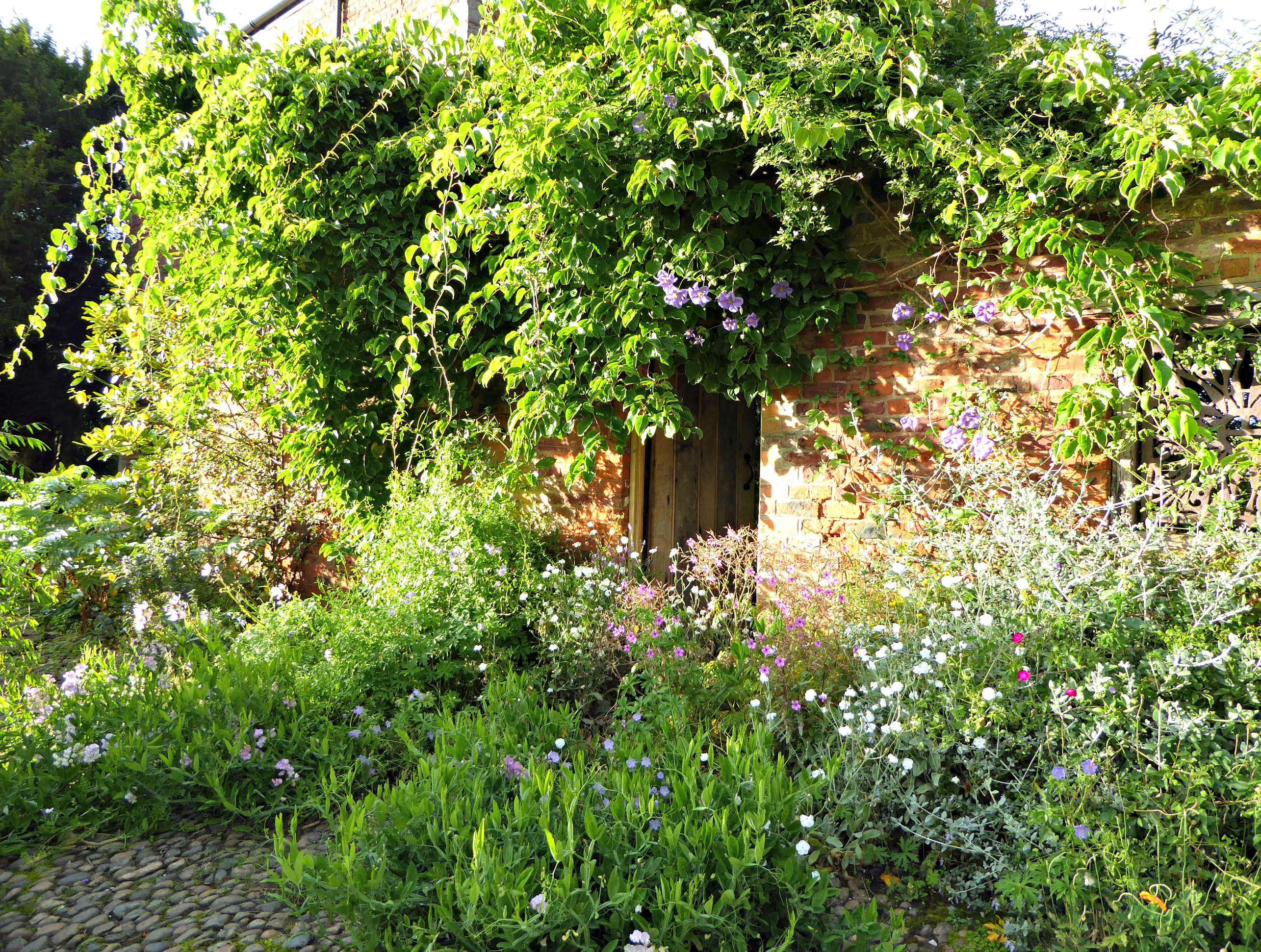Wild Child: An Intoxicating English Garden at Tattenhall ...