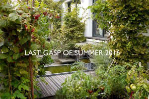issue-last-gasp-of-summer-2016-august-2016