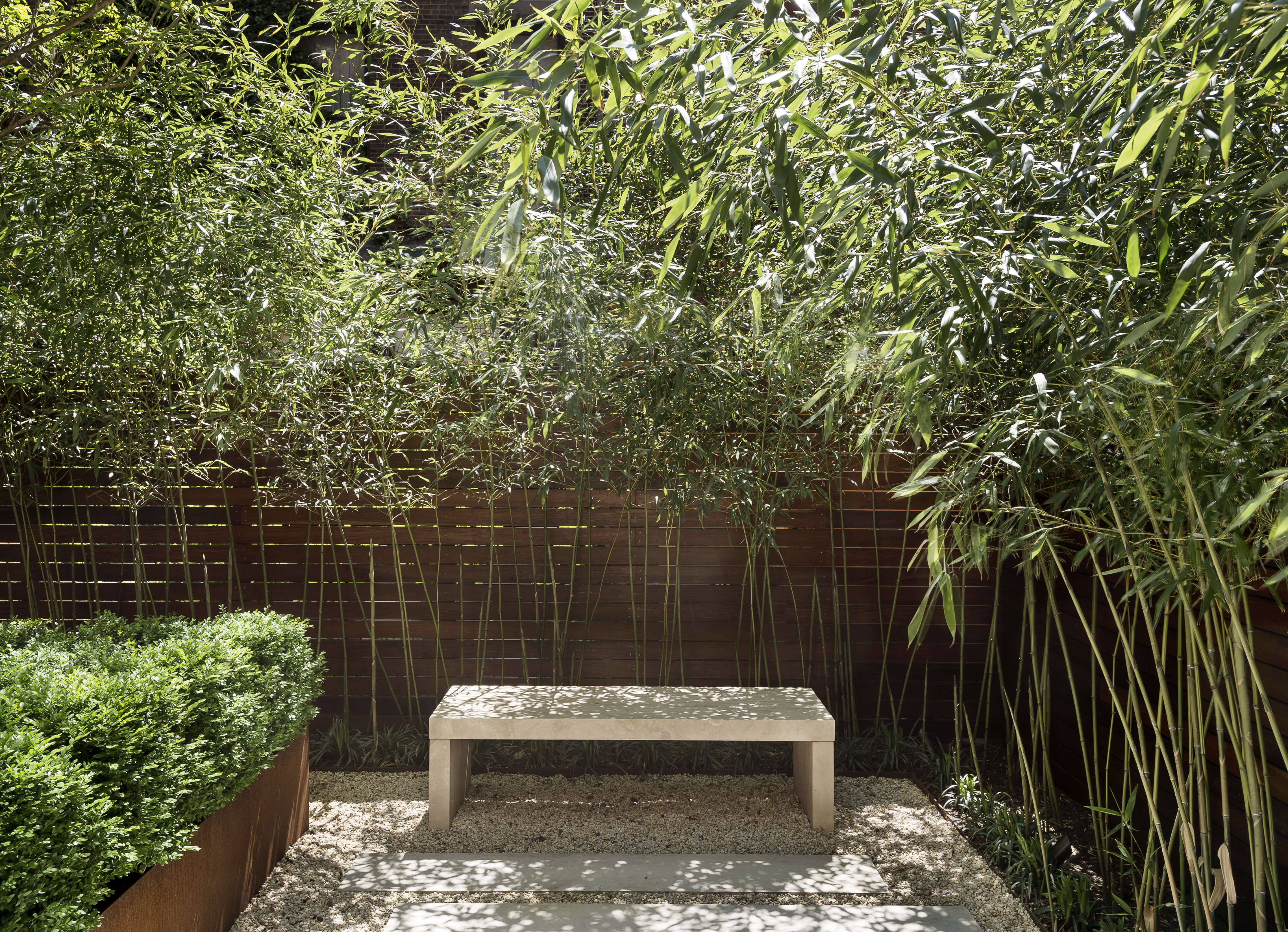 Before after from fishbowl townhouse garden to for Bamboo garden