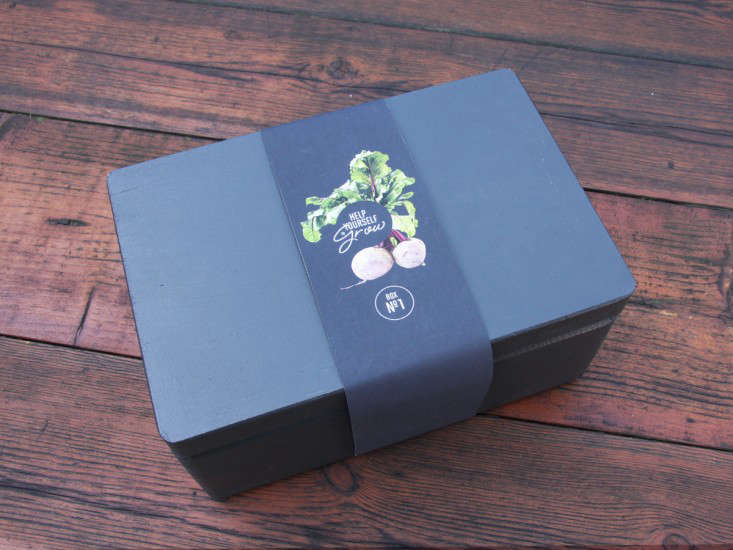 mighty-seed-box-black-franklyn-vincent-gardenista
