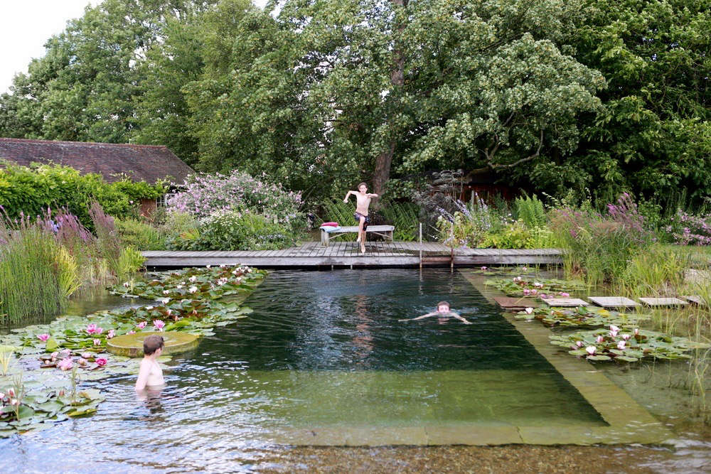 Water world a natural swimming pool lily pads included gardenista - The pond house nature above all ...