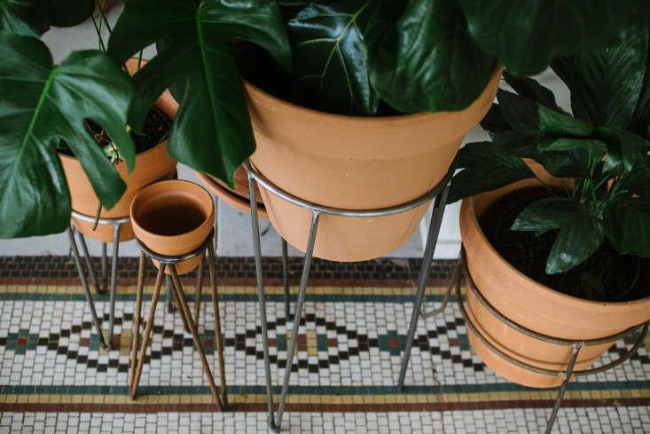 solabee_plantstands_gardenista
