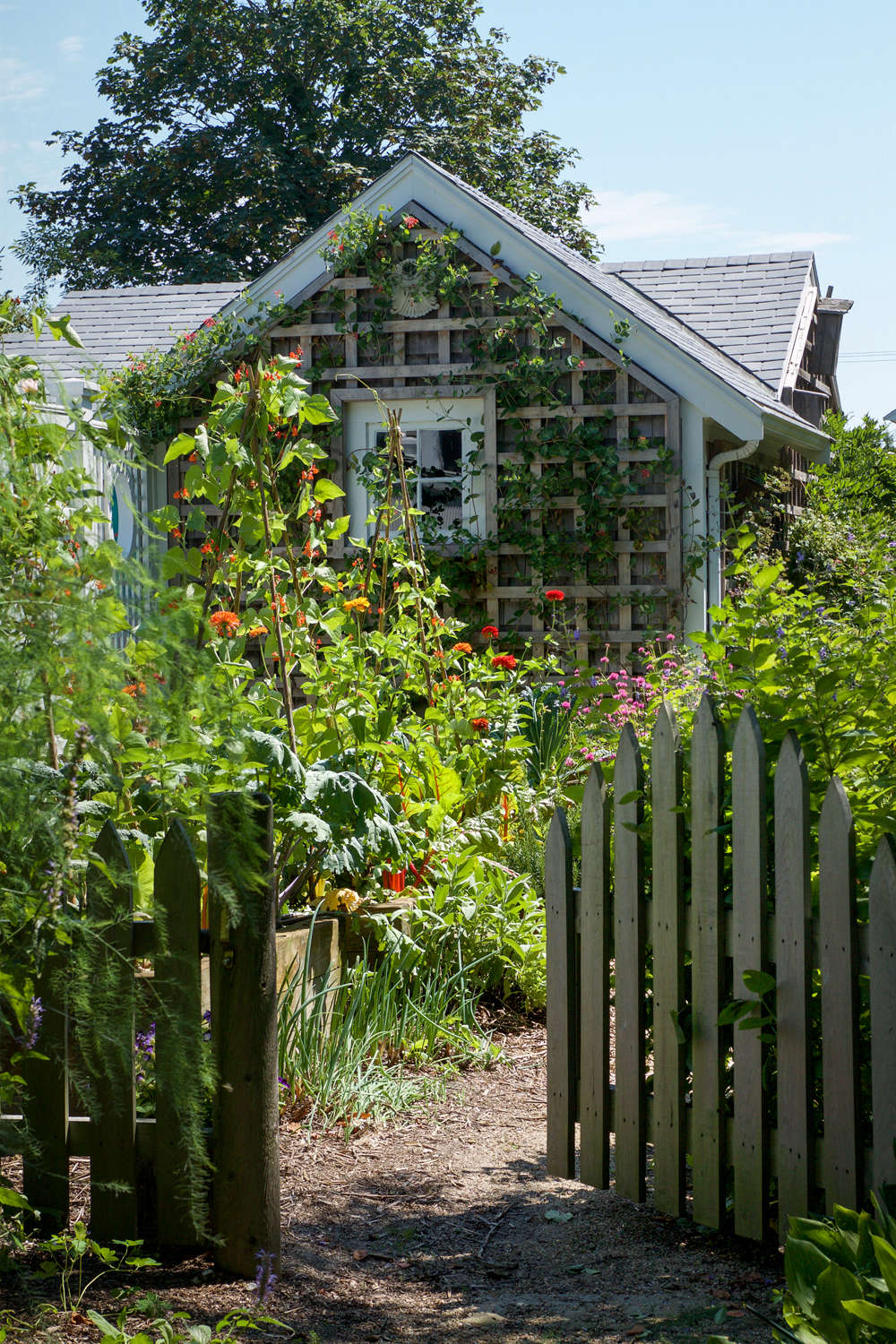 10 garden ideas to steal from provincetown on cape cod house and yard flea treatment house and yard for rent in s w wales