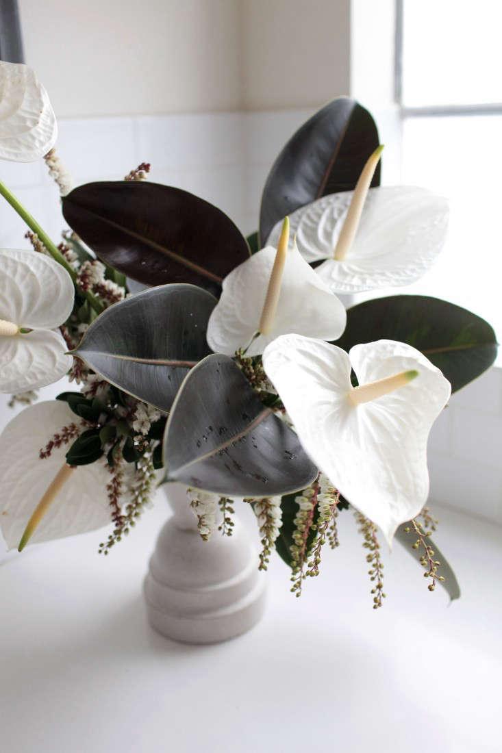 Gardenista-anthuriums-sophia-moreno-bunge-10