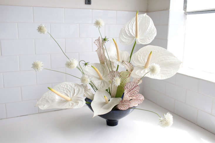 Gardenista-anthuriums-sophia-moreno-bunge-2