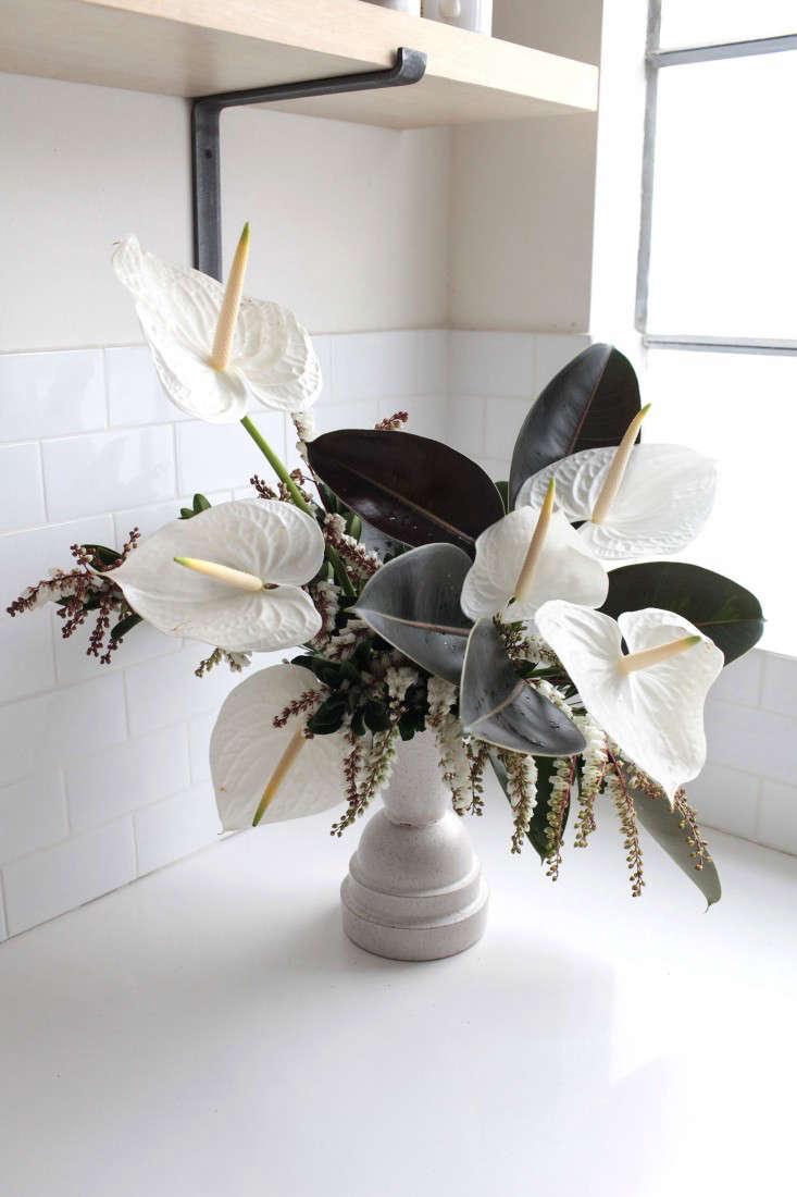 Gardenista-anthuriums-sophia-moreno-bunge-9