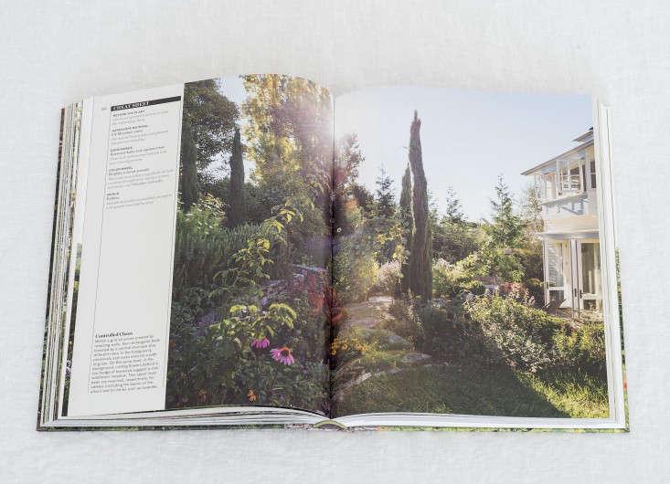 gardenista book matthew williams dsc 7202 13