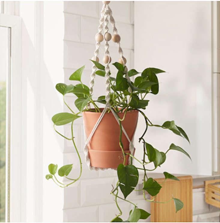 10 Easy Pieces Macram Plant Hangers Gardenista