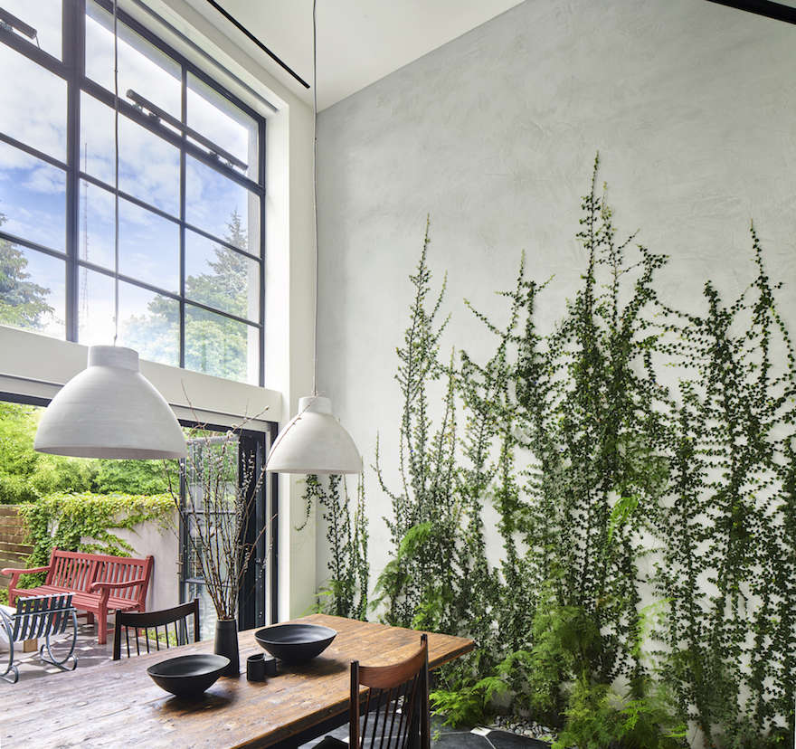 35 Indoor Garden Ideas To Green Your Home: Architect Visit: A Dining Room Wallpapered With Climbing