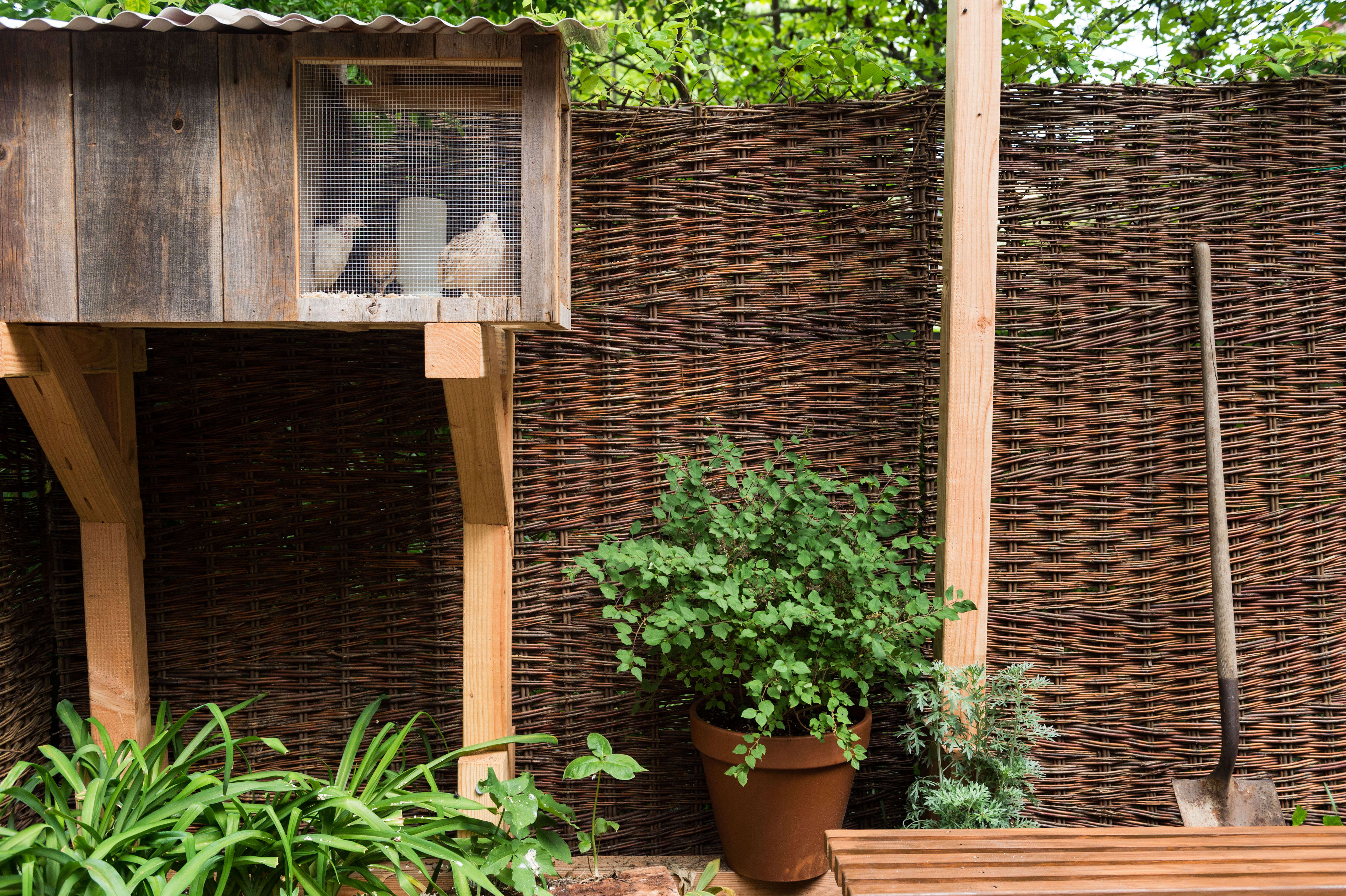 Restaurant Visit: An Innovative Micro Farm at Olmsted in Brooklyn ...