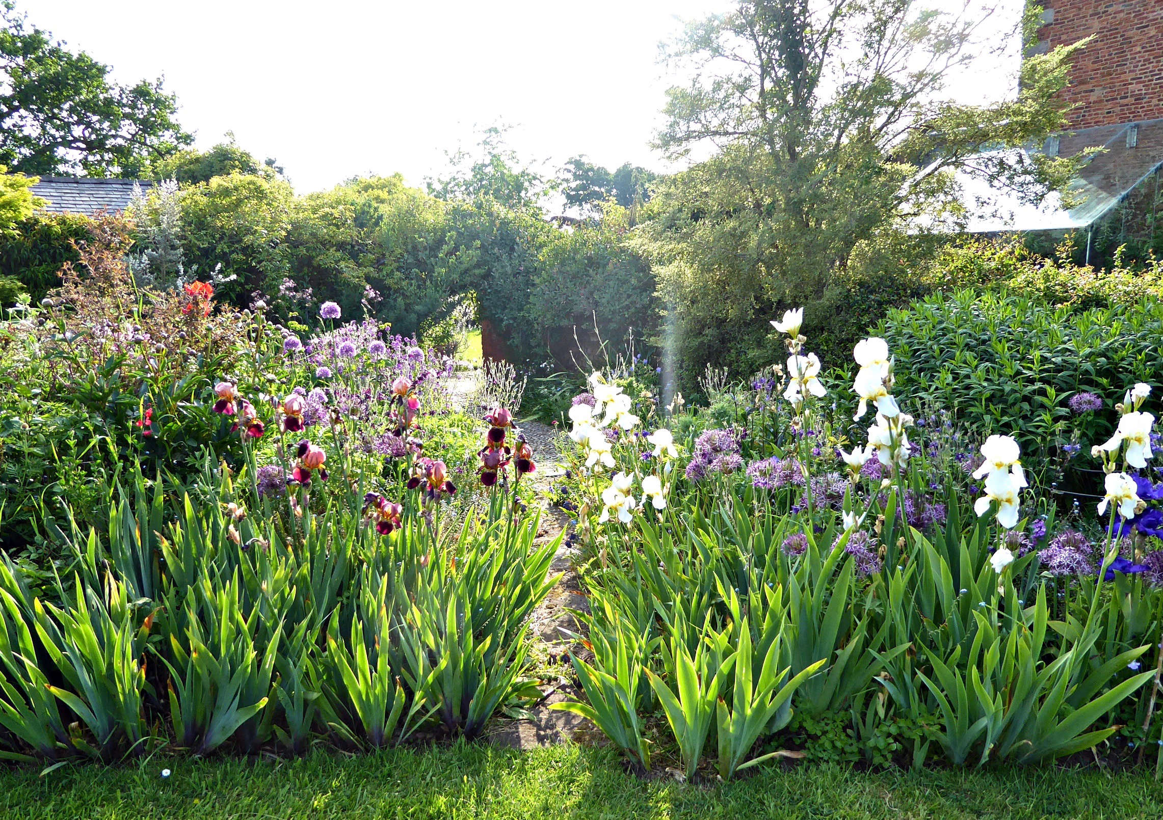 Garden Visit Flower Borders in a Colorful English Garden
