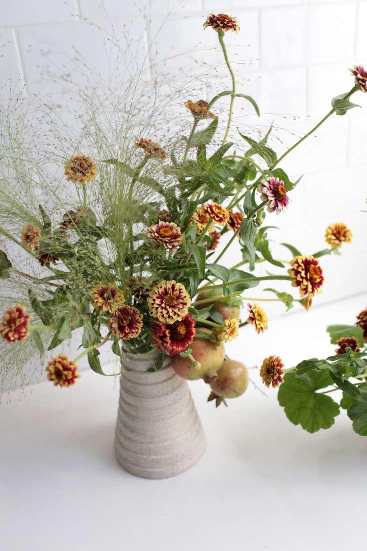 zinnias-sophia-moreno-bunge-gardenista-10