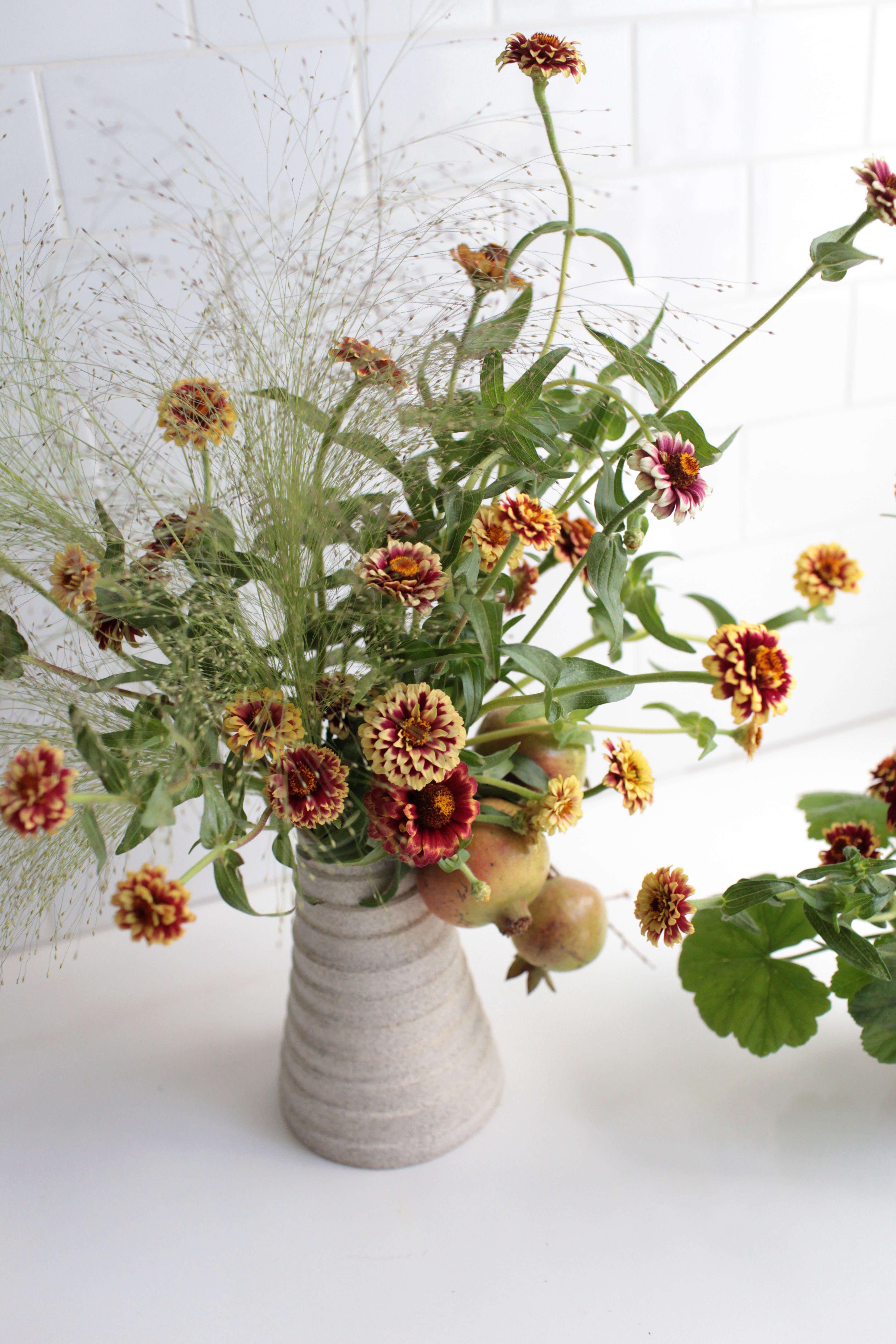 Zinnias Rethinking A Farm Stand Flower Gardenista