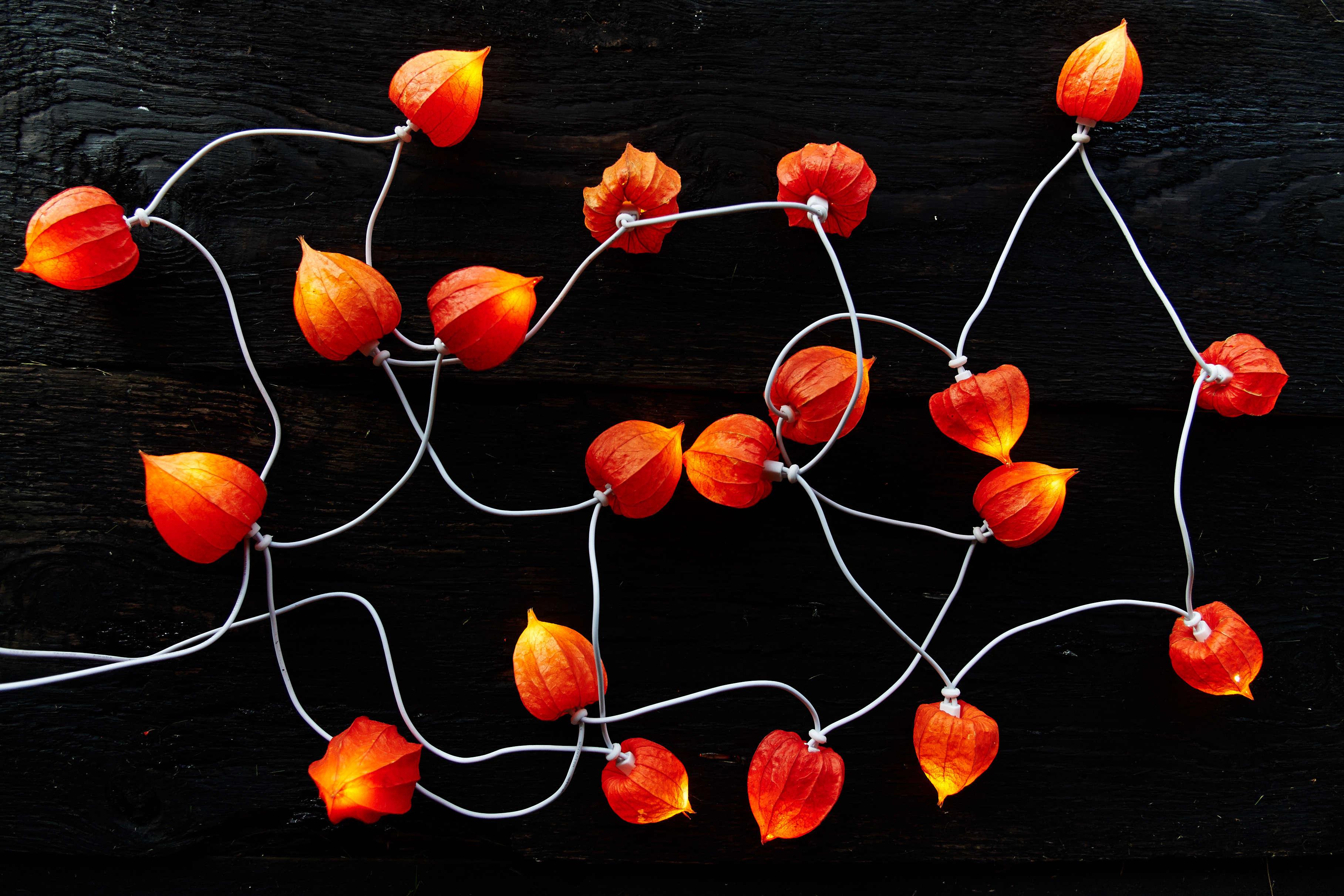 Diy Halloween String Lights : DIY: Pumpkin Lights Without the Plastic - Gardenista