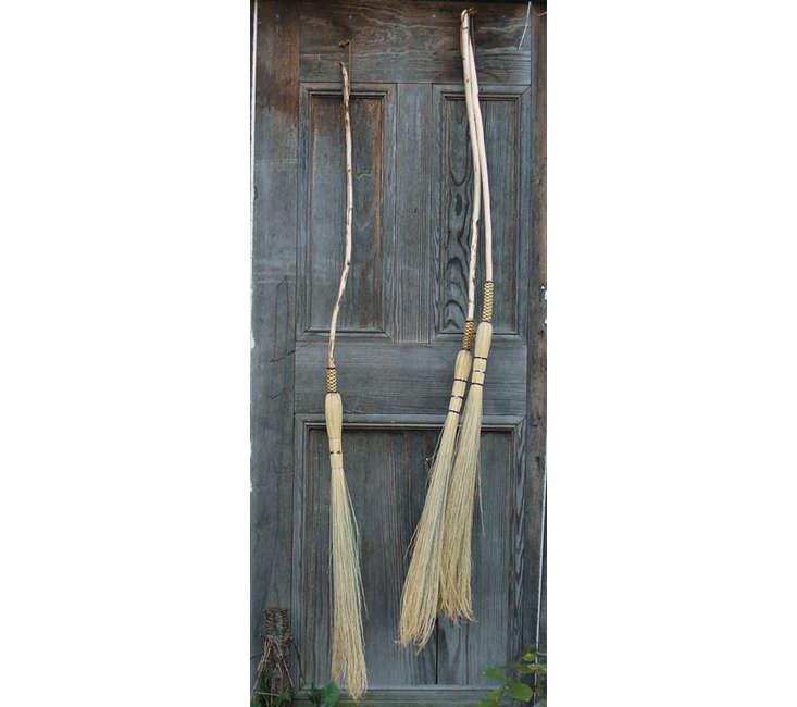 Brenwood Forage Cobwebber Broom