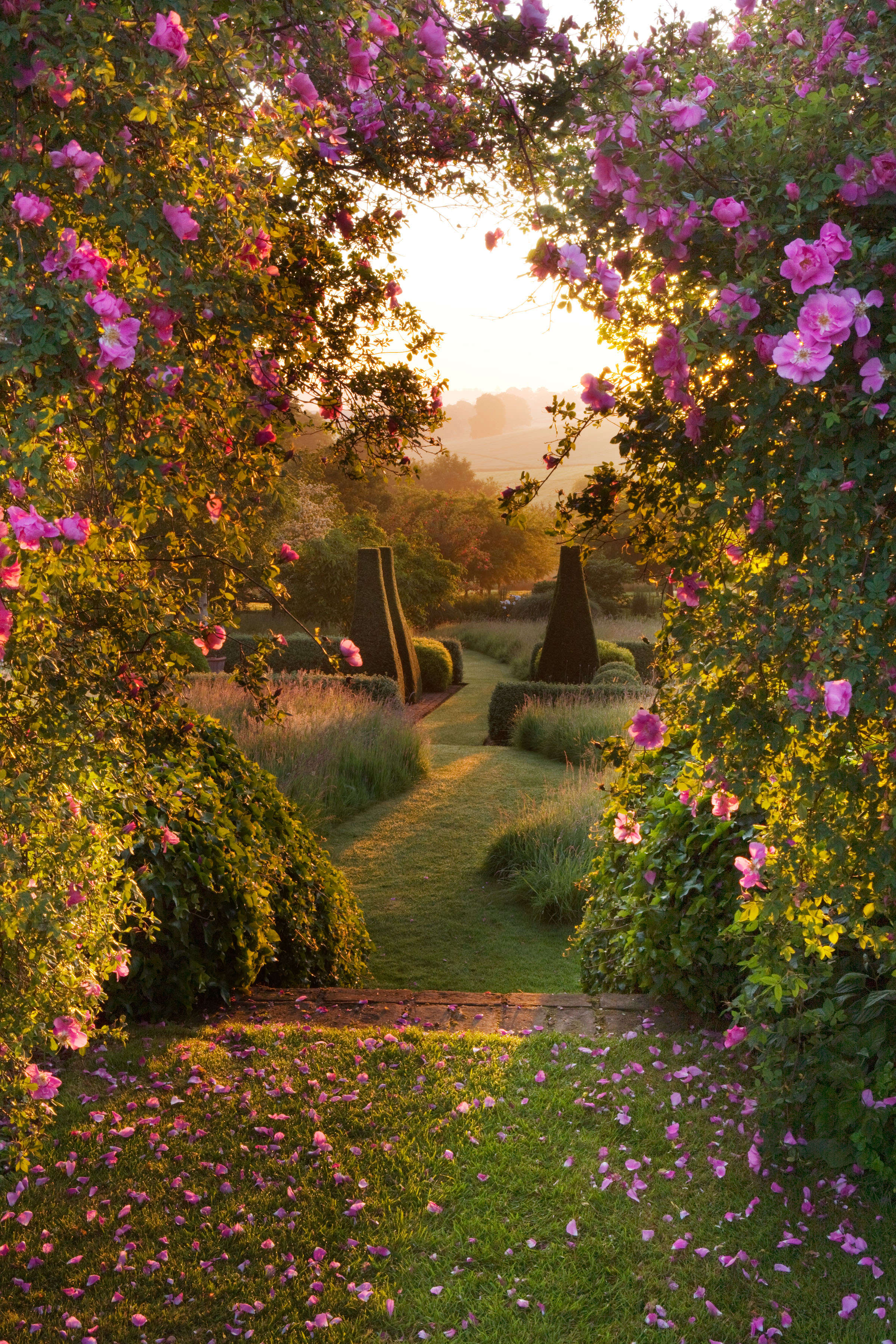 Expert Advice: 9 Tips to Take Better Pictures from Garden ...