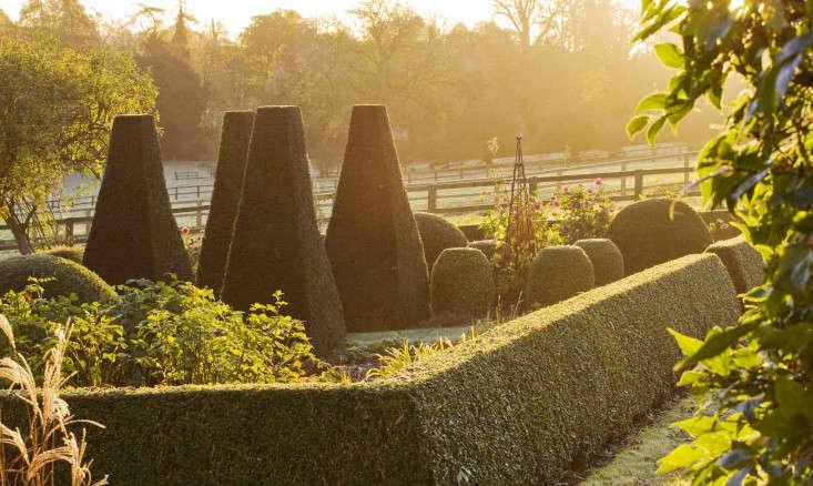 41 Increíbles Ideas de Hedge Jardín para su Patio (FOTOS)