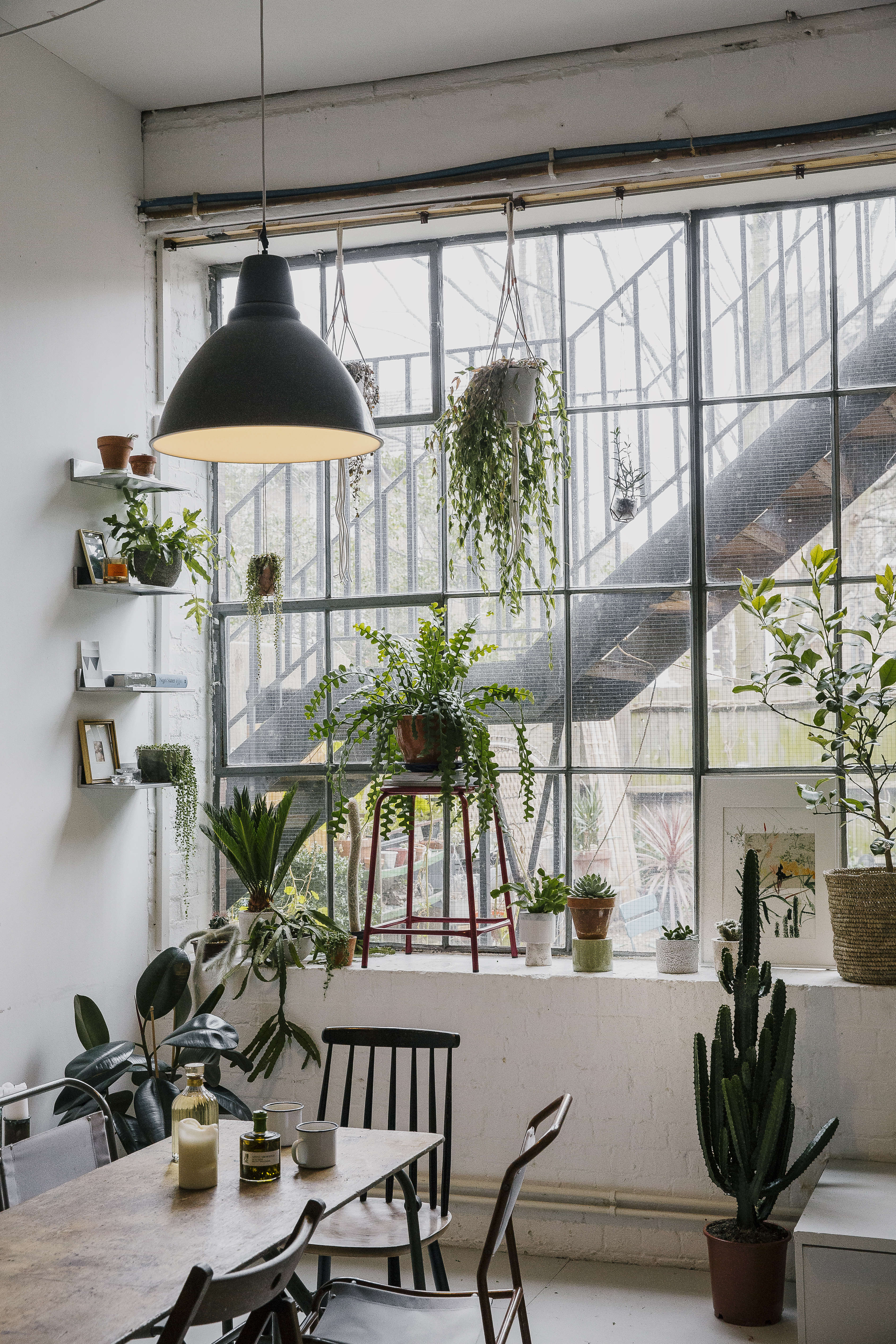 Above the authors originally met at university before starting out as a print designer and set designer respectively but their mutual love of plants
