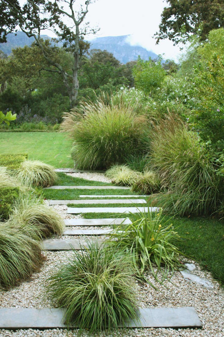 Gardening 101 fountain grass gardenista for Fountain grass garden