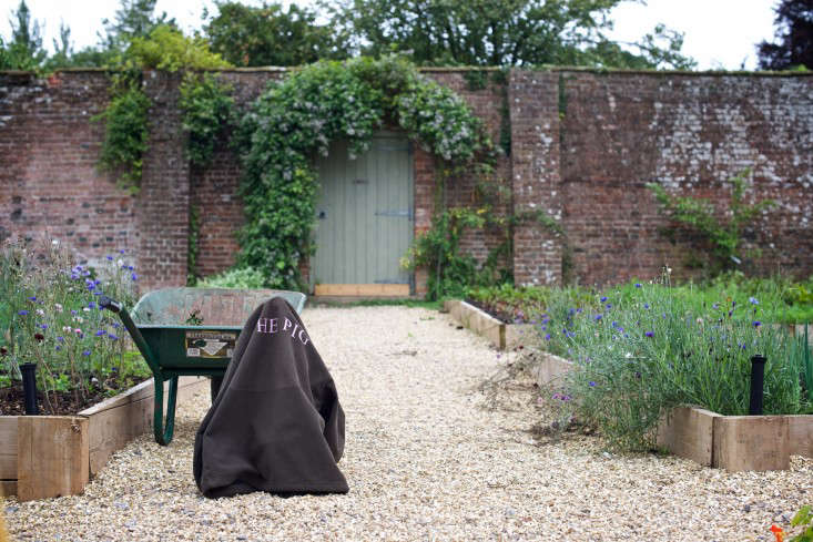 the-pig-wheelbarrow-will-venning-gardenista-7