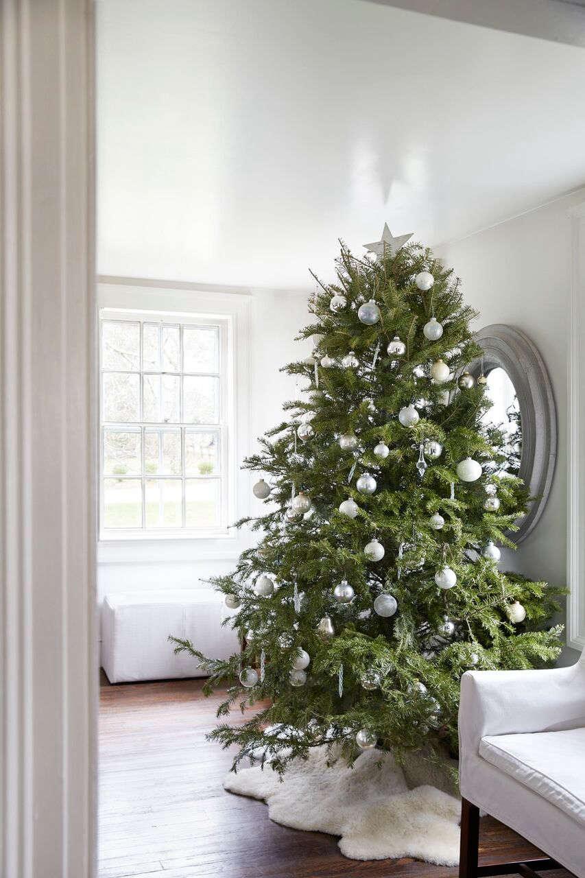 Tricia Foley Christmas Tree Monochramatic