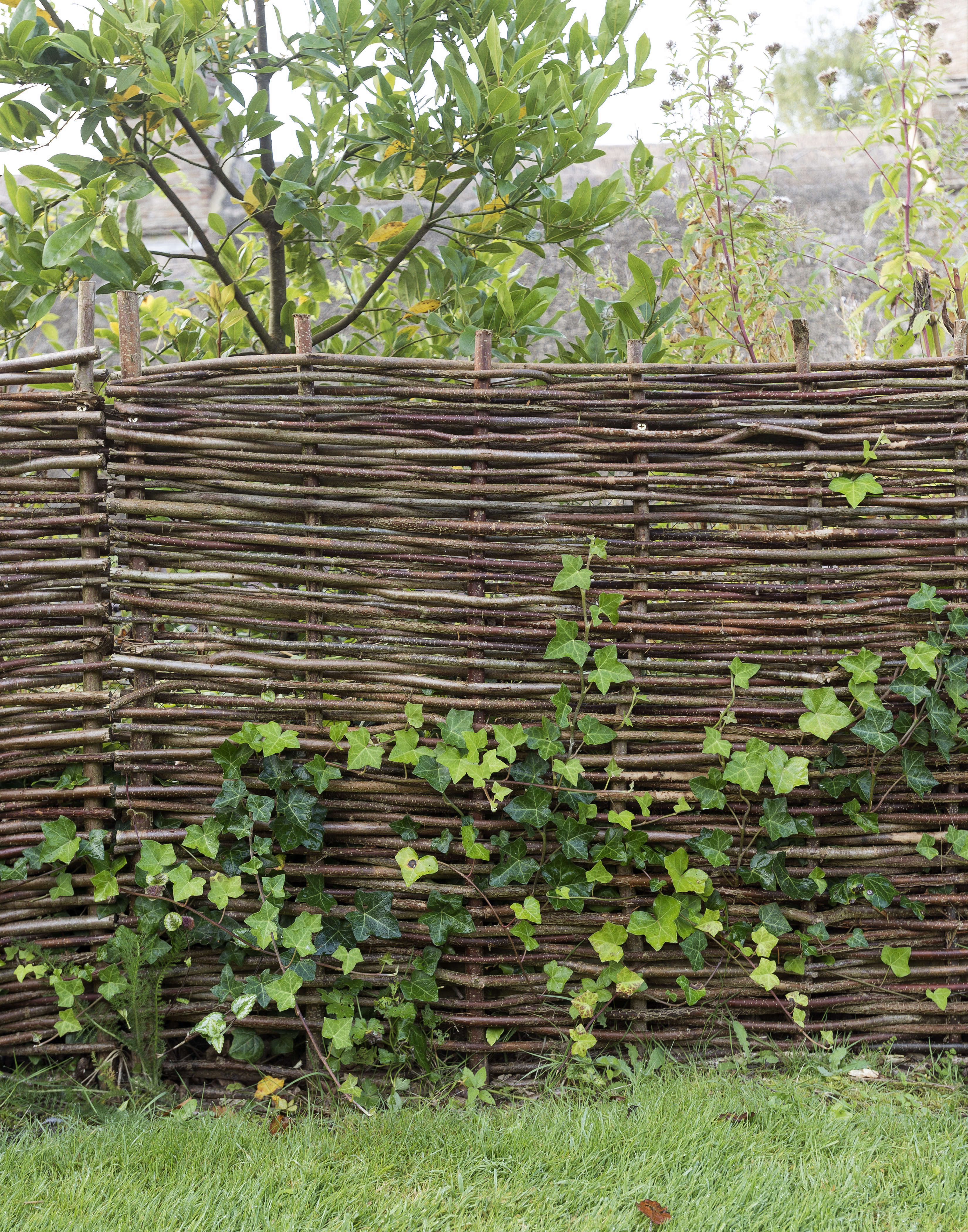 Hardscaping 101 Woven Fences